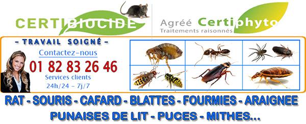 Deratisation Bernes sur Oise 95340